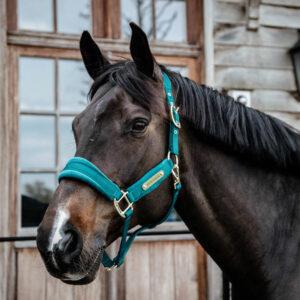 Kentucky Horsewear Velvet Head Collar Emerald 4